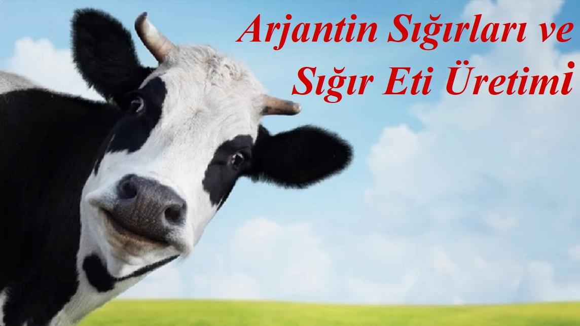 Arjantin Sığırları ve Sığır Eti Üretimi