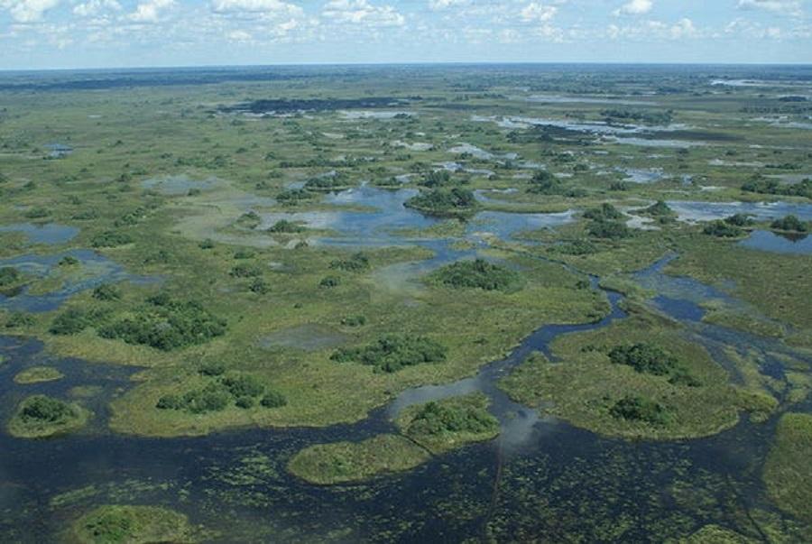 İnsanlar 200.000 Yıl Önce Botswana'da Ortaya Çıktı