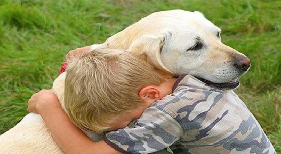 Köpekler Sahiplerini Ailesi Olarak Görüyor